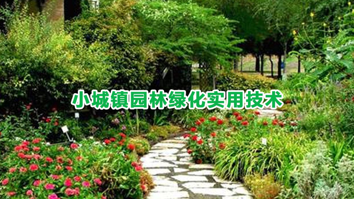 小城镇园林绿化实用技术
