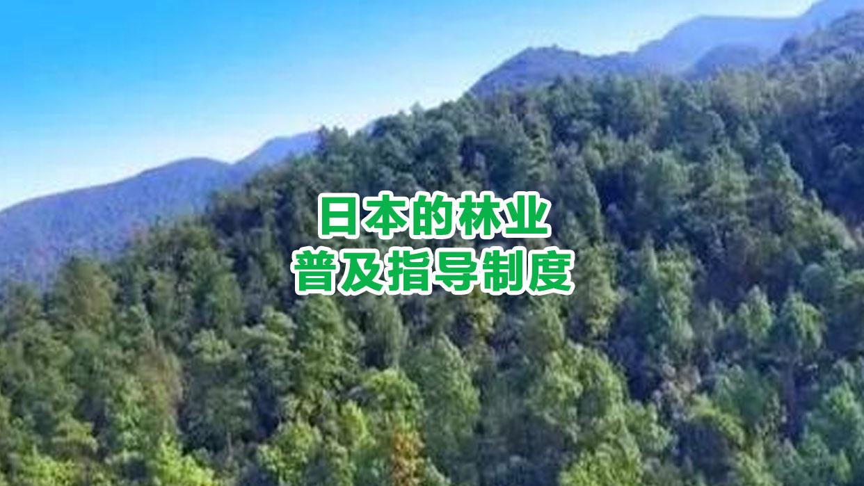 日本的林业普及指导制度