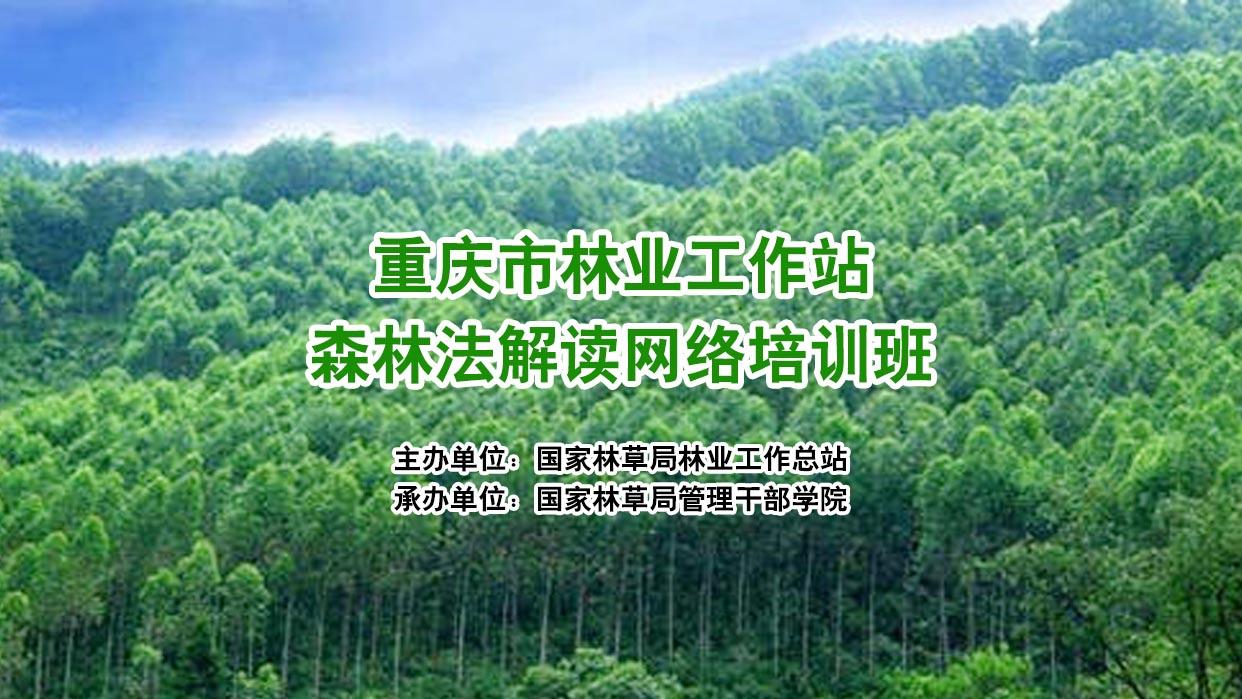 重庆市林业工作站森林法解读网络培训班