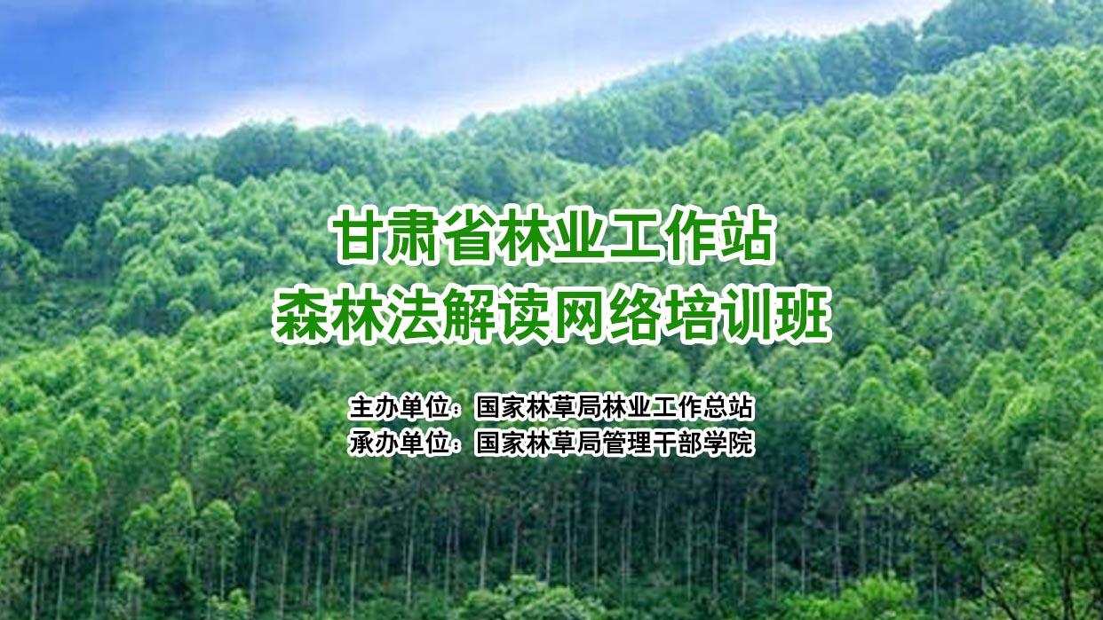 甘肃省林业工作站森林法解读网络培训班