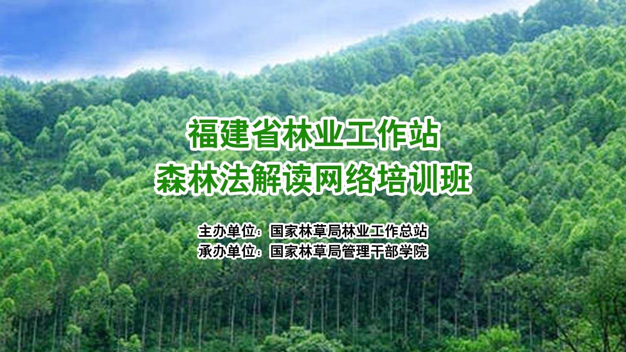 福建省林业工作站森林法解读网络培训班