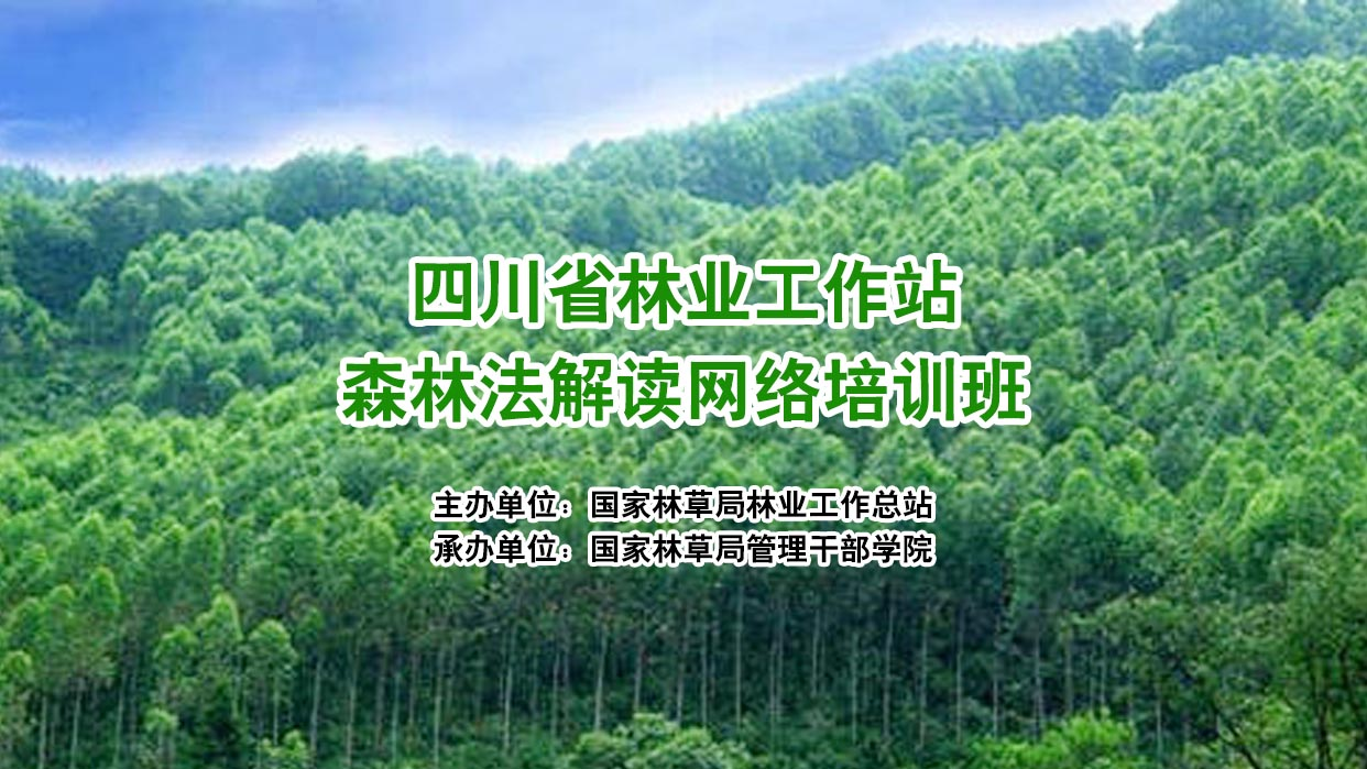 四川省林业工作站森林法解读网络培训班