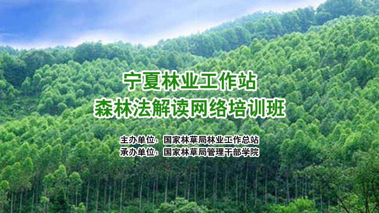 宁夏林业工作站森林法解读网络培训班