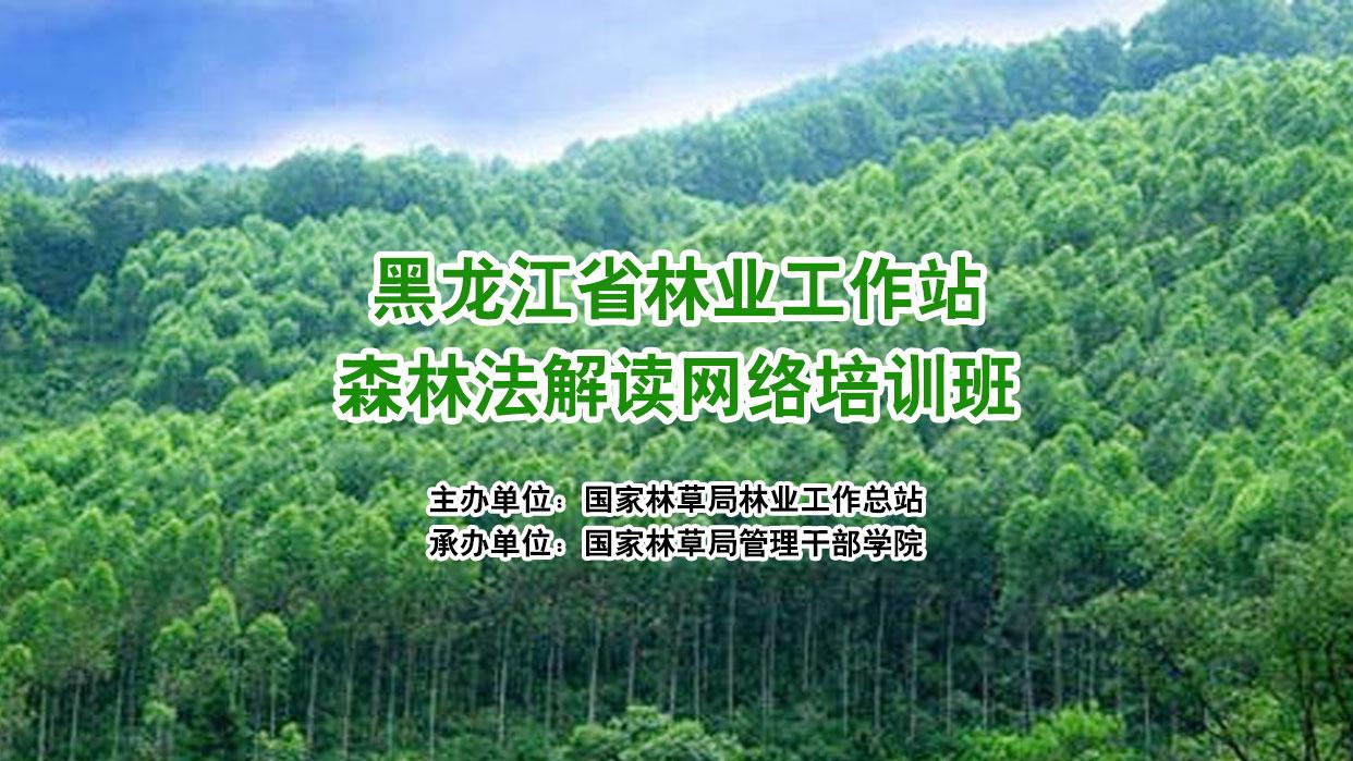 黑龙江省林业工作站森林法解读网络培训班